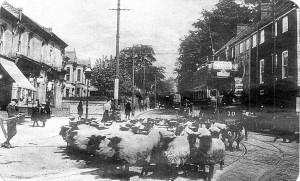 Earlham Road, Norwich early 1900.